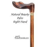 Natural Beauty Palm Grip Cane