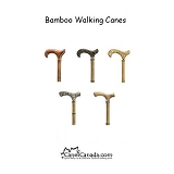 Bamboo Walking Cane - Derby and Fritz