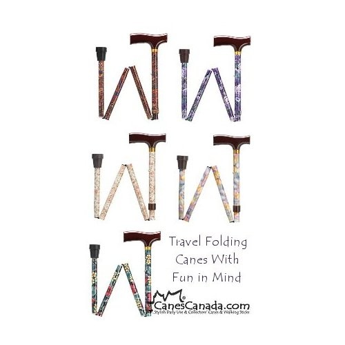 FUN FRITZ TRAVEL FOLDING CANES